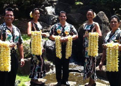 Leis of Hawaii main picture
