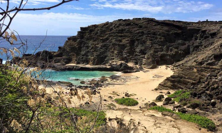 Private Tour of Oahu1