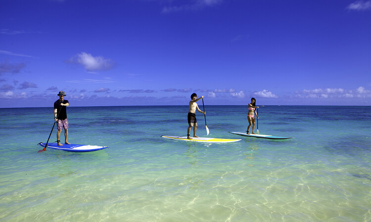 Stand Up Paddle (SUP) Lesson1