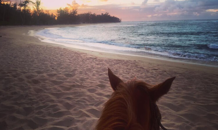 Sunset Horseback Ride2