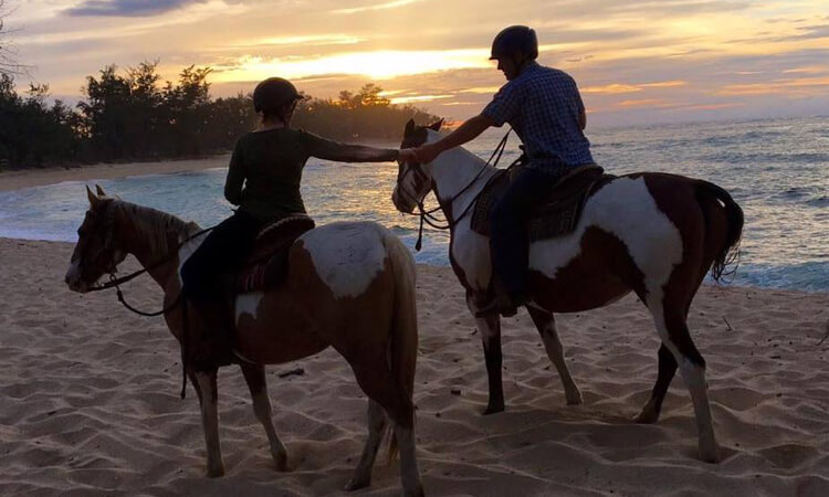 Sunset Horseback Ride3