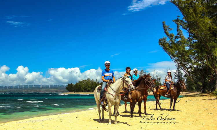 Sunshine Horseback Ride