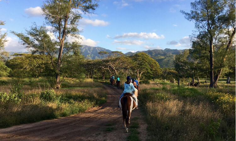 Sunshine Horseback Ride2